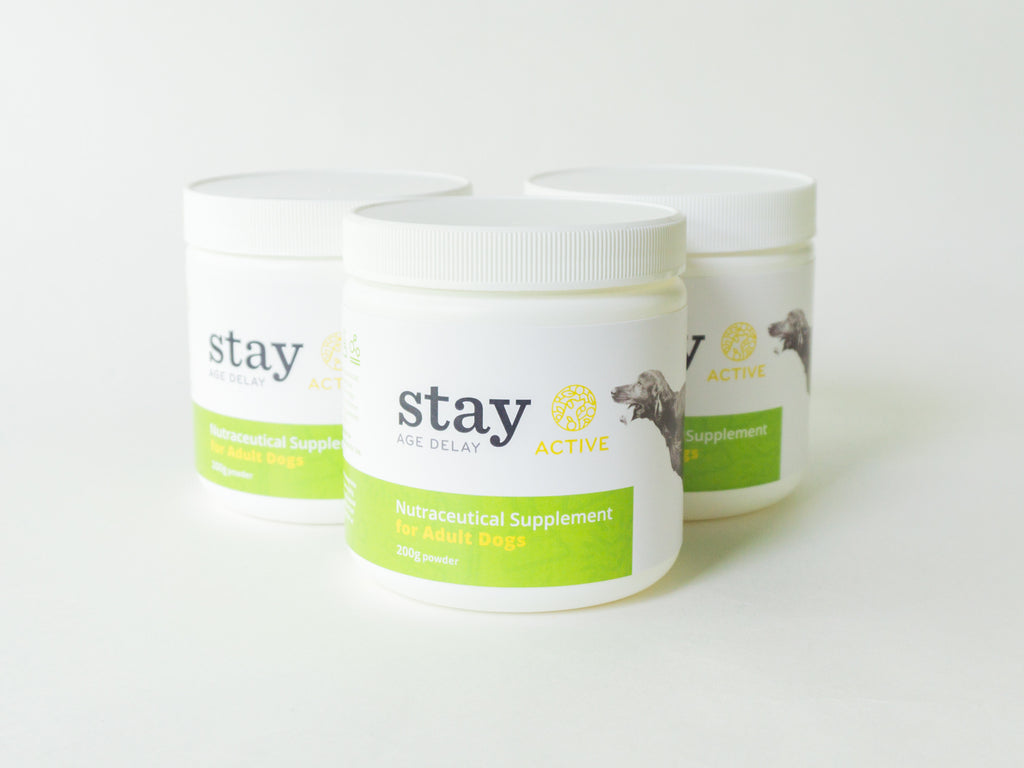 STAY Active ADULT - 90 Day Supply