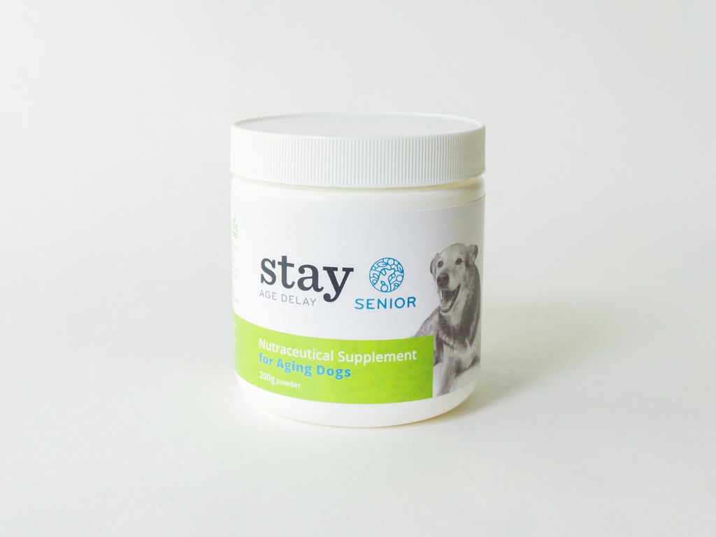STAY Active SENIOR - 30 Day Supply