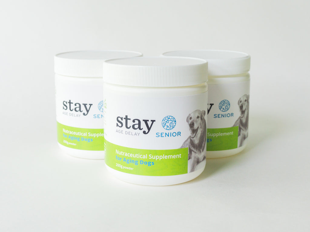 STAY Active SENIOR - 90 Day Supply