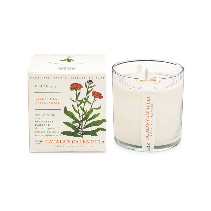KOBO Candles | Plant the Box Collection Full Size Candle KOBO Catalan Calendula (orange blossom, cut flowers, grass)