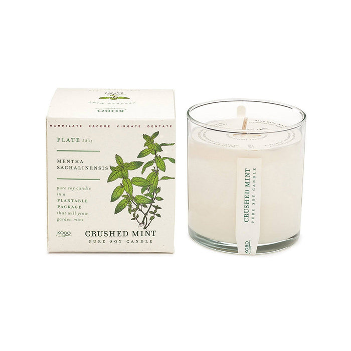 KOBO Candles | Plant the Box Collection Full Size Candle KOBO Crushed Mint (spearmint, peppermint, jasmine)