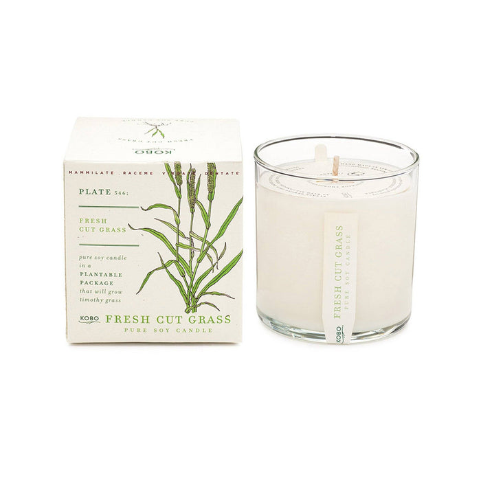 KOBO Candles | Plant the Box Collection Full Size Candle KOBO Fresh Cut Grass (grass, cedar, green banana)
