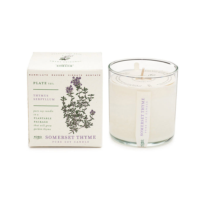 KOBO Candles | Plant the Box Collection Full Size Candle KOBO Somerset Thyme (thyme leaves, lemongrass, sage)
