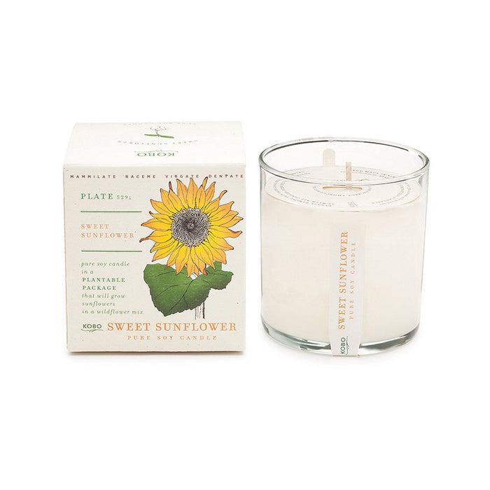 KOBO Candles | Plant the Box Collection Full Size Candle KOBO Sweet Sunflower (cyclamen, jasmine, melon)