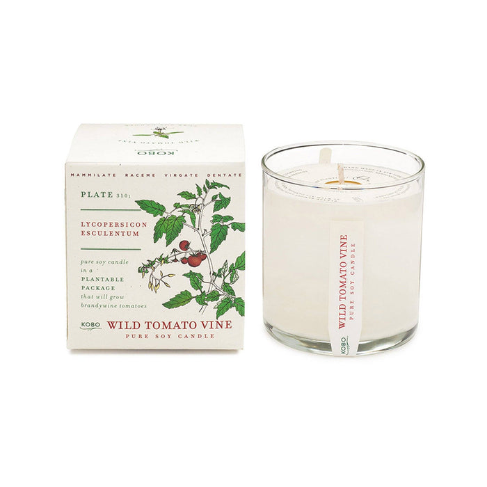 KOBO Candles | Plant the Box Collection Full Size Candle KOBO Wild Tomato Vine (tomato leaf, clover)