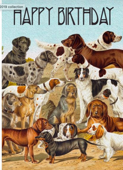 Lots of Dogs - Blank Greeting Card card The Northern Line
