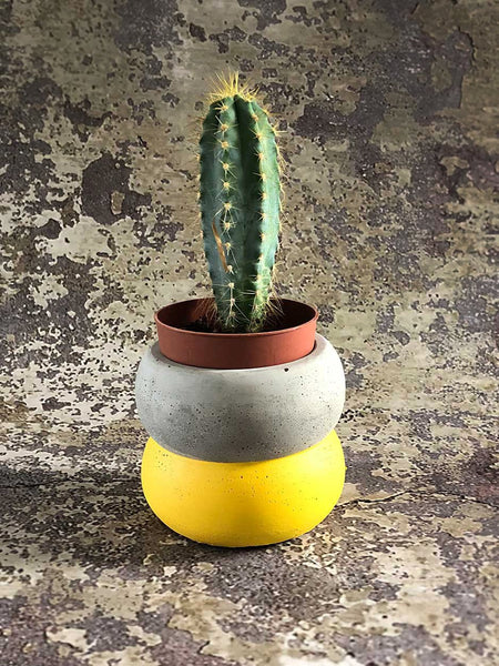 yellow small cement planter