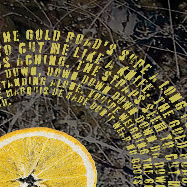 The Stone Roses - Fool's Gold lyric poster - Detail 3