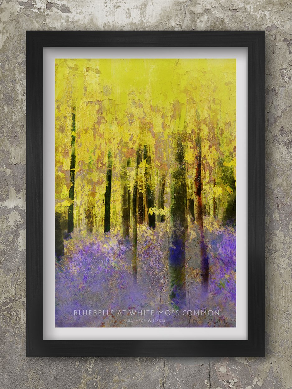 Bluebells Poster. White Moss Common Lake District