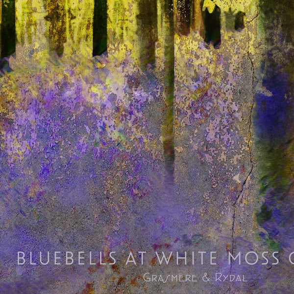 White Moss Common Bluebells Poster Posters The Northern Line