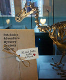 Pet Dodos - Blind Date with a Book
