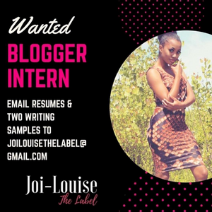 Blogger Intern (Virtual)