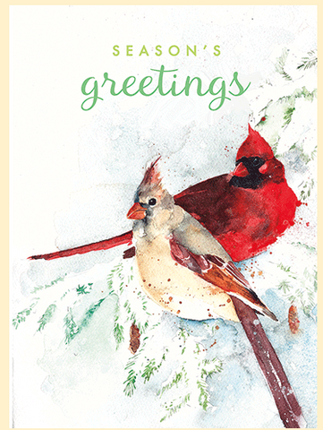 Arte Cardinals Boxed Cards (Set of 8)