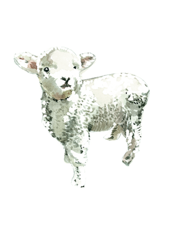 Card - Niki Kingsmill - Lamb