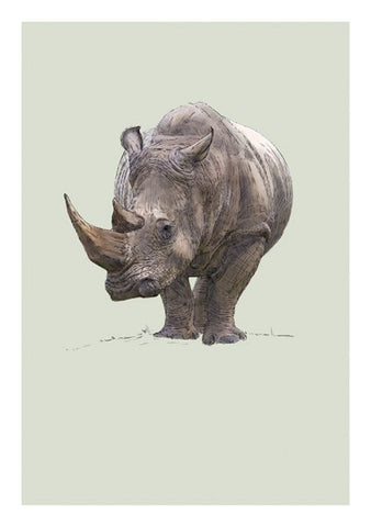 Card - White Rhino