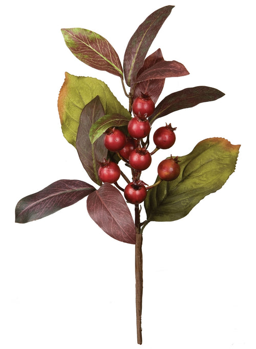 Laurel Berry Spray 13""