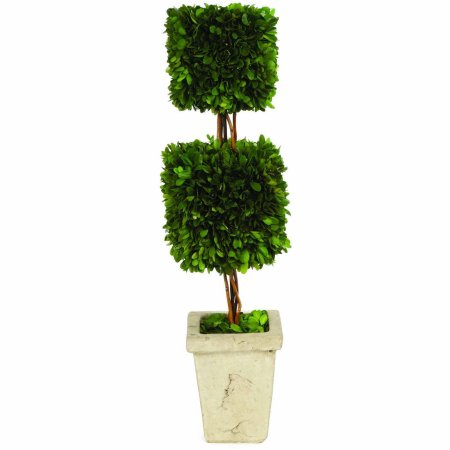 Boxwood Topiary - Double Square