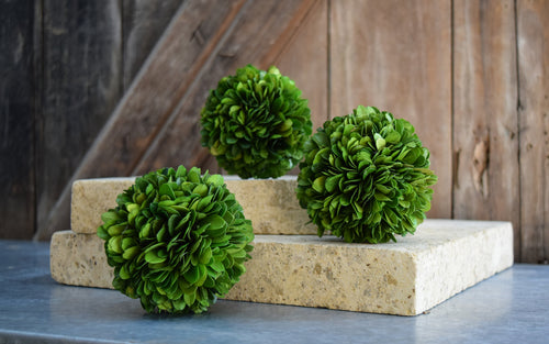 Boxwood Ball - 4""