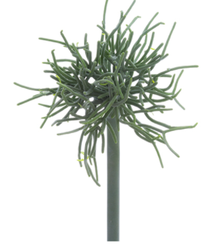 "9"" Pencil Cactus Pick- Green/Gray"