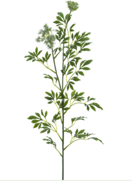 "41"" Queen Anne's Lace Spray- White"