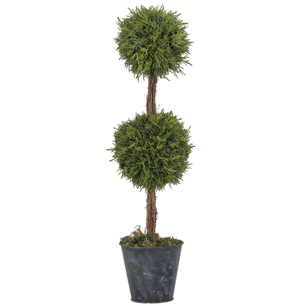 Cypress Double Ball Topiary