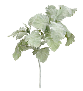 "19"" Dusty Miller Spray- Green/Gray"