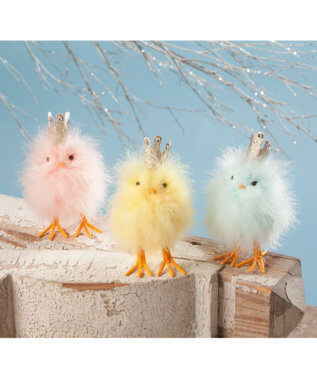 Fluffy Feather Chicks