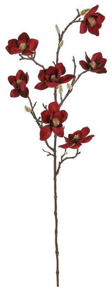 Red Velvet Magnolia Branch