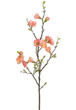 Quince Blossom Spray - 35""