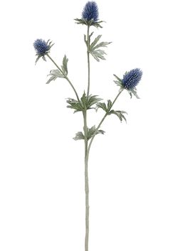 Blue Thistle Spray - 26""