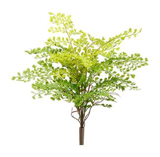 "Maidenhair Fern Bush - 18"" Green"