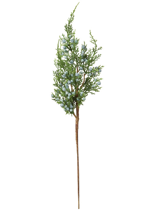 Juniper Pine Spray 19""