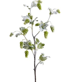Snowy Hops Spray - 41""