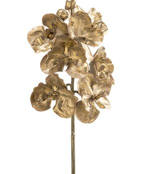 Gold Metallic Orchid Stem - 20""