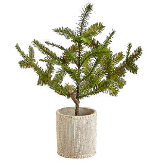 Pine Tree in Cement Pot - 16""