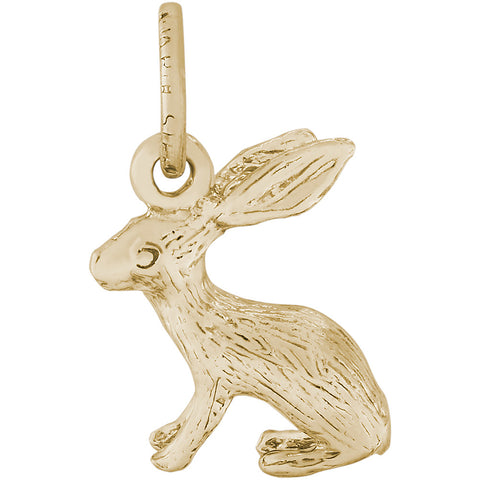 Bunny Accent Charm