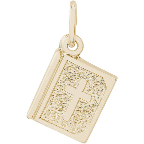 Bible Accent Charm