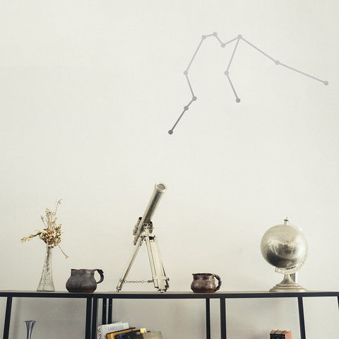 Aquarius Constellation | Wall Decal