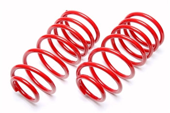 Peugeot 206 1.9 diesel Lowering spring kit -30mm