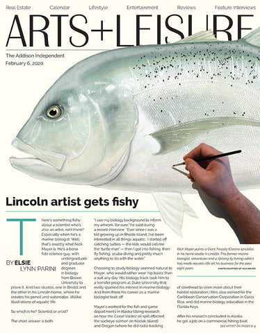 Cover_Article_Nick_mayer_fish_art