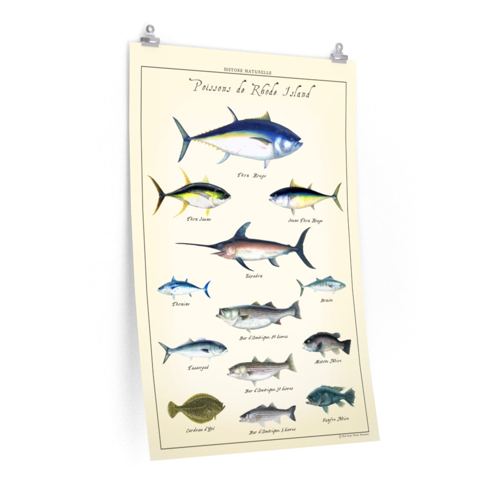Vintage French Poissons de Rhode Island Poster