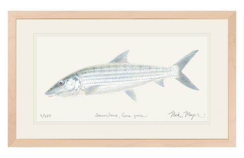 Bonefish Original Watercolor Painting