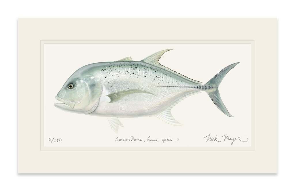 unframed Boss GT fish art print
