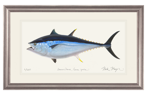 Giant Bluefin Tuna 2 Print