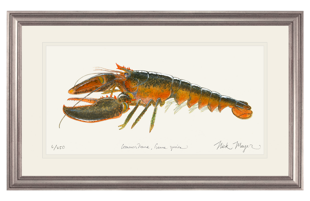 Northern Lobster II Original Watercolor Painting