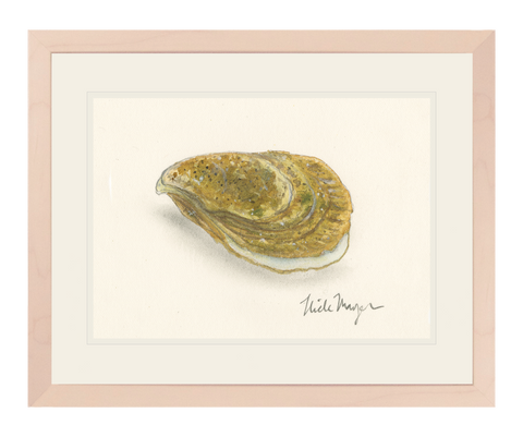 Atlantic Oyster 2