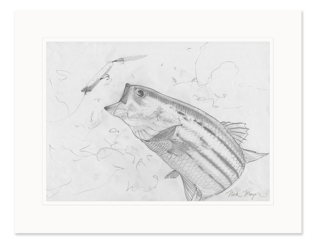 Striper and Atom Popper Original Pencil Sketch