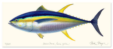 Yellowfin Tuna Masterwork Canvas