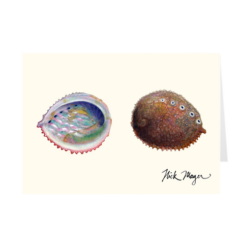 Pink Abalone Notecards