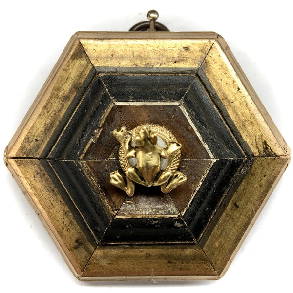 Gilt Frame with Frog on Brooch
